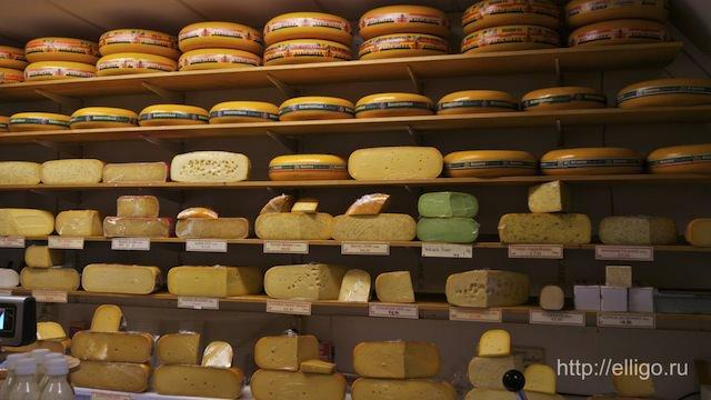 Сырный магазин.jpg