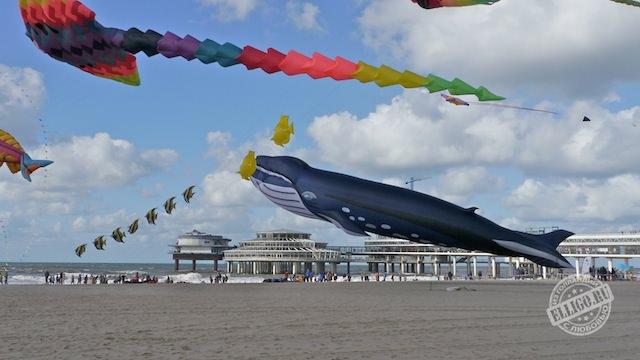 Фестиваль воздушных змеев, Vliegerfestival-01