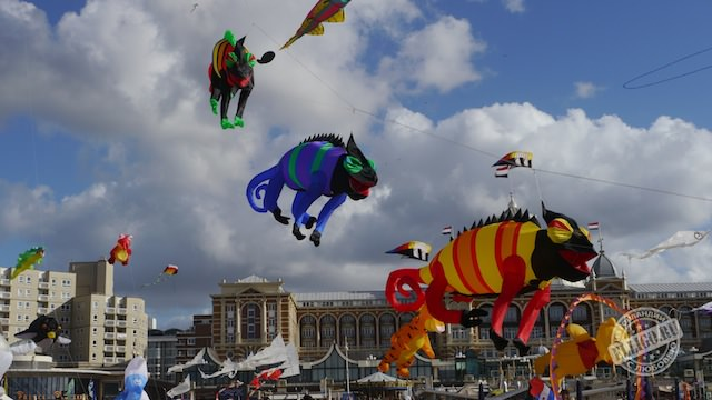 Фестиваль воздушных змеев, Vliegerfestival-04
