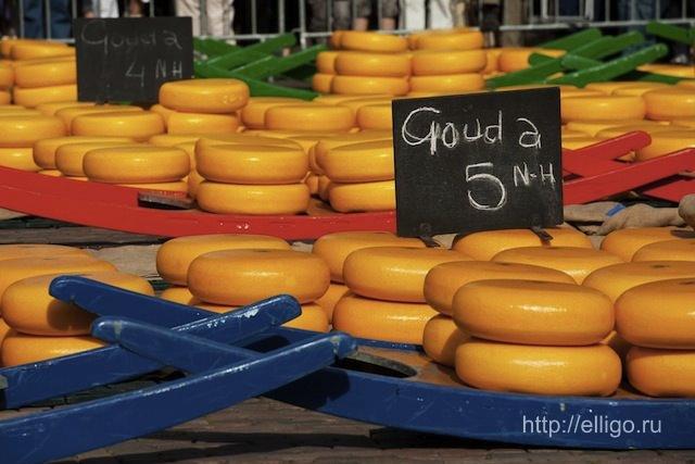 "Голландский сыр ""Гауда"""
