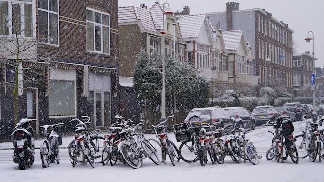 zima-v-niderlandah