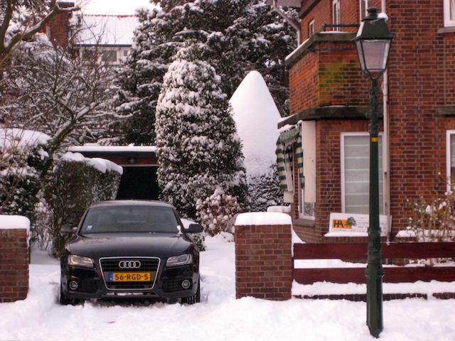 снег в Нидерландах
