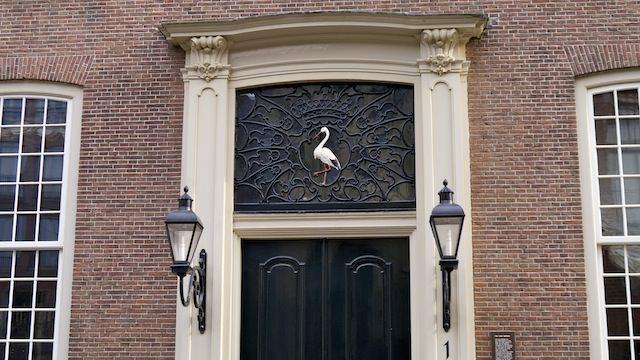 белый аист в Гааге