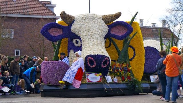 парад цветов 2013