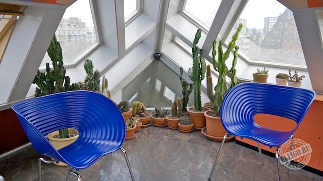 Зимний сад на верхнем этаже