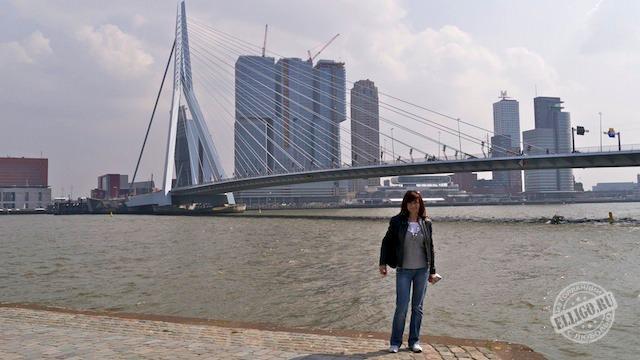 Мост Эразма, Роттердам, Rotterdam