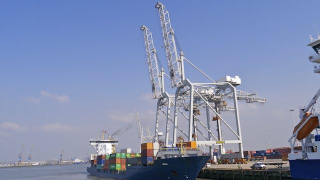 краны в порту Роттердама