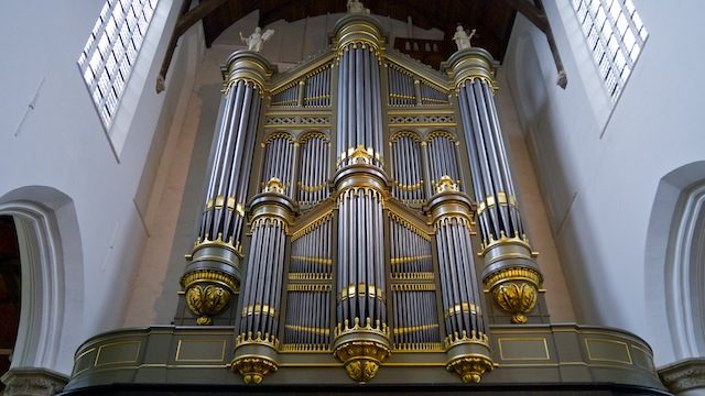 крупнейший орган в Нидерландах
