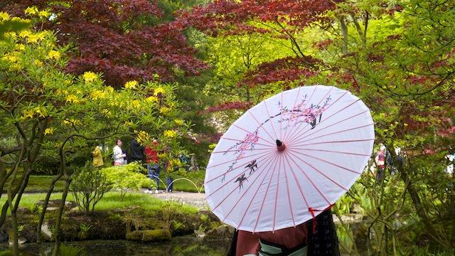 фотосессия в Японском саду