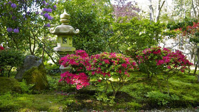 лампы перед входом в Японский сад