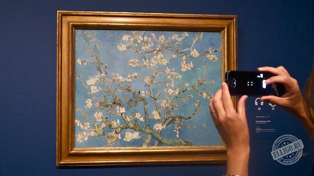 Цветущий миндаль, Ван Гог
