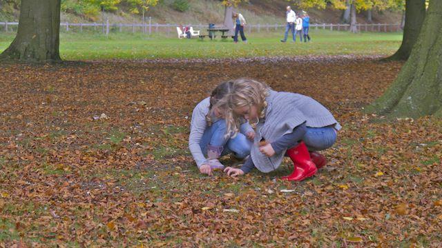 Две девчушки в парке