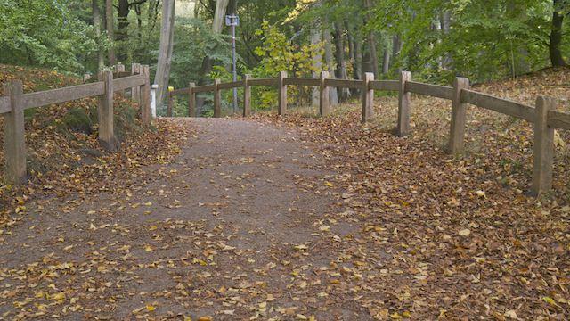 Парковая дорожка