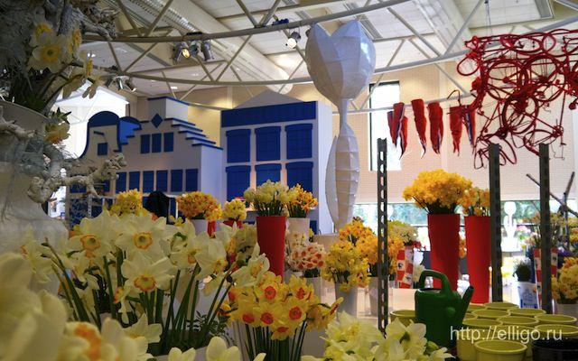 Выставка тюльпанов.jpg