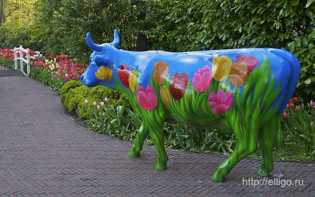 Голландская корова 1.jpg
