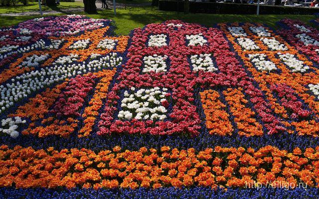 Мозаика из тюльпанов.jpg