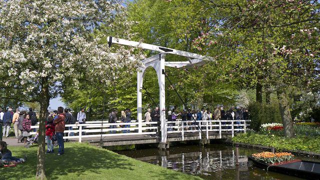 В парке Кёкенхоф
