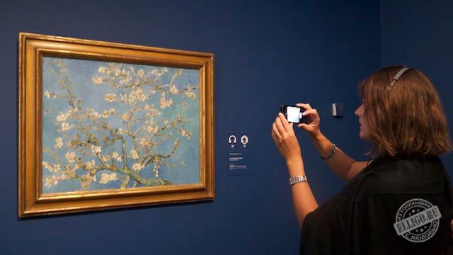 Цветущий миндаль, музей Ван Гога