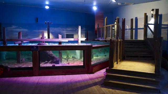 Главный аквариум