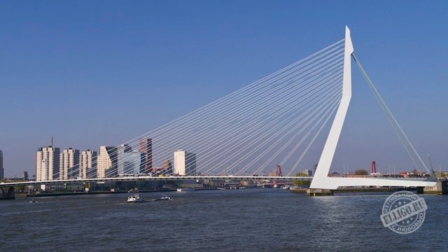 Мост Эразма в Роттердаме