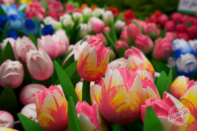 Амстердам в декабре, тюльпаны