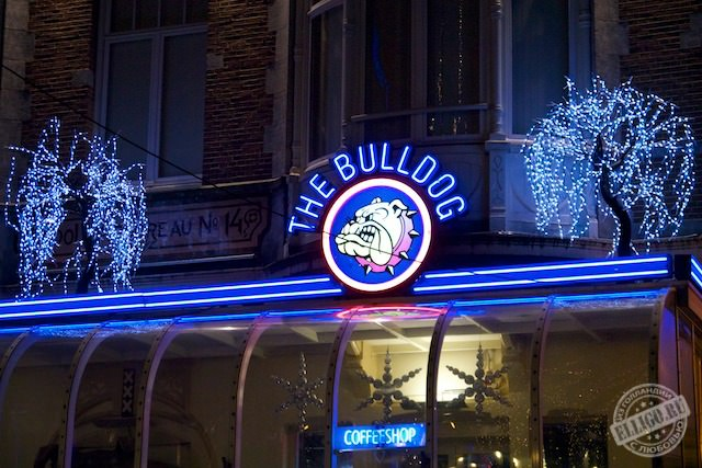 Coffeeshop Ночной Амстердам, Amsterdam