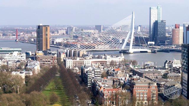 Erasmusbrug, Rotterdam-2