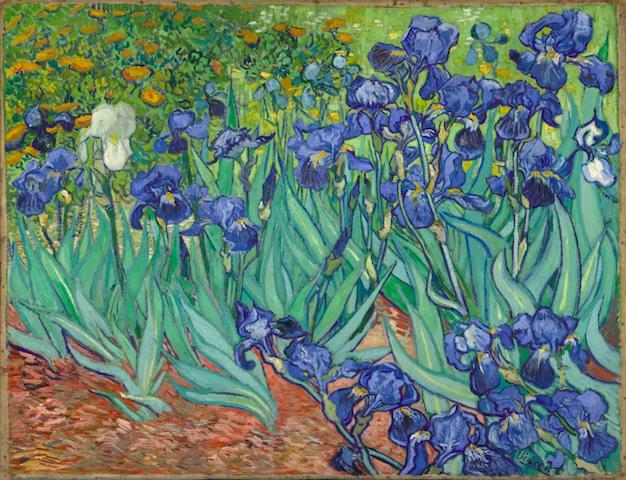 Картина Ирисы, Ван Гог