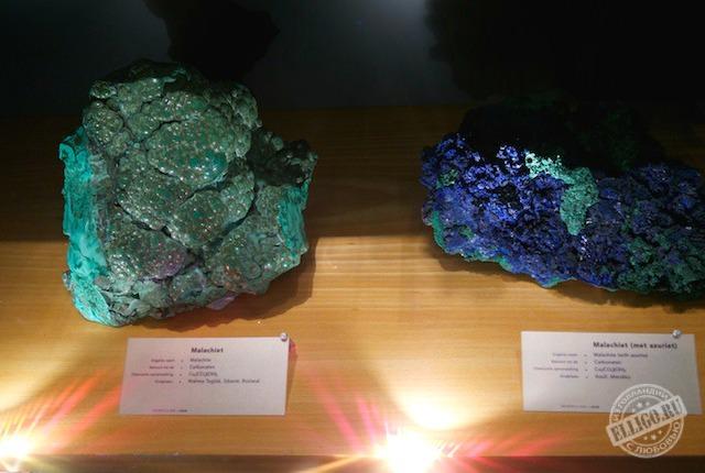 stone_naturalis