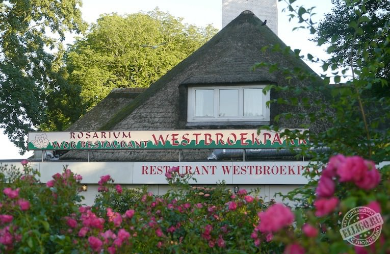 wokrestaurant-rosaruim