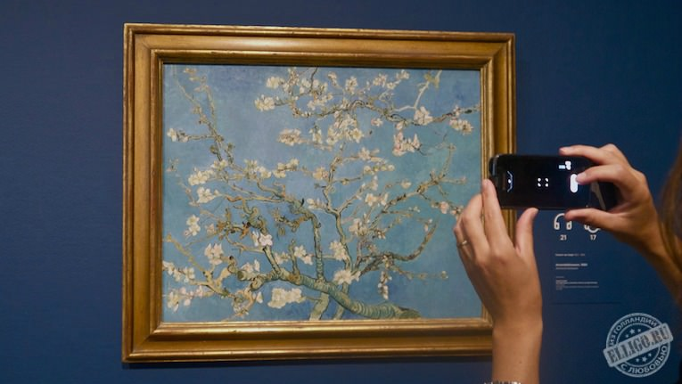 painting_almond_blossom